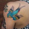 bird72 - Copy